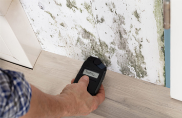 Mold Assessment & Testing